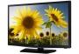 Телевизор Samsung UE19H4000 0